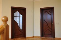 Цельная и стеклянная двери