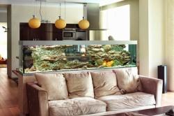 Зонирование гостиной и спальни при помощи аквариума