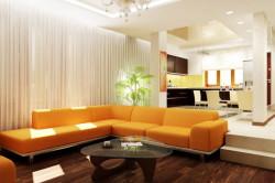 Зонирование совмещенной кухни с гостиной при помощи возвышения поля на кухне