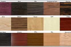 Виды пород древесины для изготовления дверей