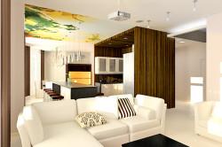 Зонирование кухни и гостиной в стиле эко-стиле