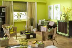 Подбор мебели к гостиной в фисташковых оттенках
