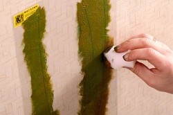 Нанесение краски с помощью паралона