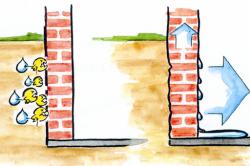 Схема образования сырости, плесени и грибка